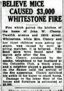 Queens Daily Star, Thursday, 11 October 1928, Page 7, Col. 5.